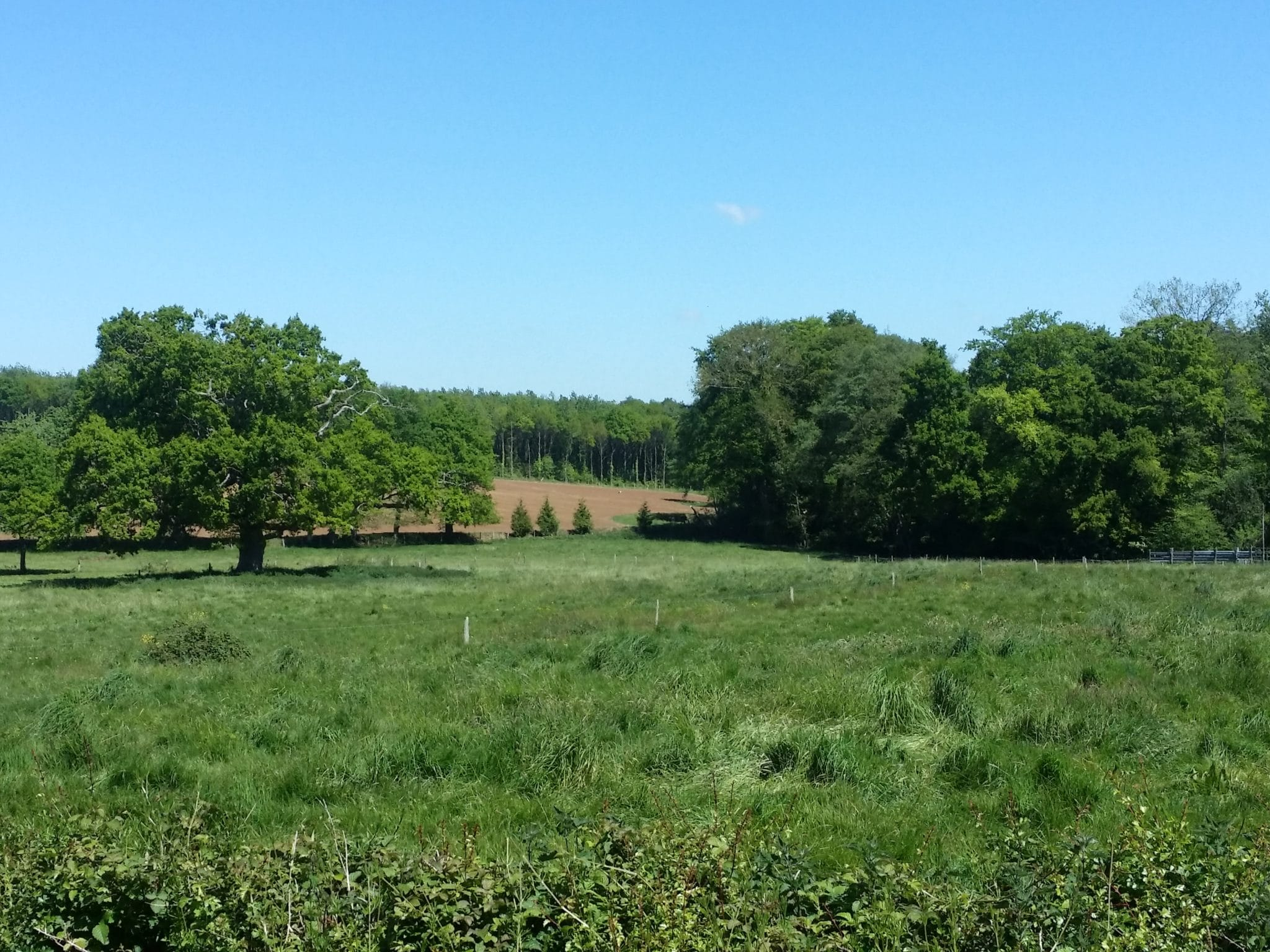 paysage trame verte et bleue